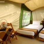 Ферма Чокчай Camp